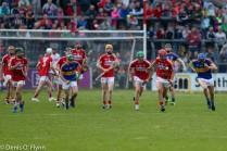 Cork V Tipp 2017 Photos Denis Flynn (11)