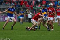 Cork V Tipp 2017 Photos Denis Flynn (36)