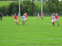 Og Iomaint CIT 2017 Cork V Waterford (2)