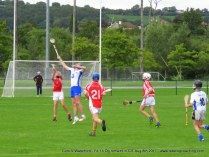 Og Iomaint CIT 2017 Cork V Waterford (25)