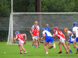 Og Iomaint CIT 2017 Cork V Waterford (6)