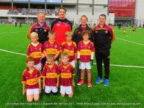 Teams U8 Football Blitz Pairc Ui Chaoimh Oct 14th 2017 (55)
