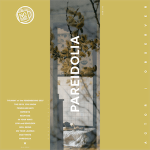 Actor Observer album cover for Pareidolia