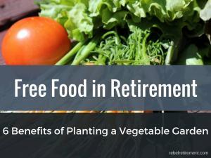 Retirement Vegetable Garden