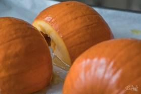 Rebels ITK Blog Post_Pumpkin Recipe-38