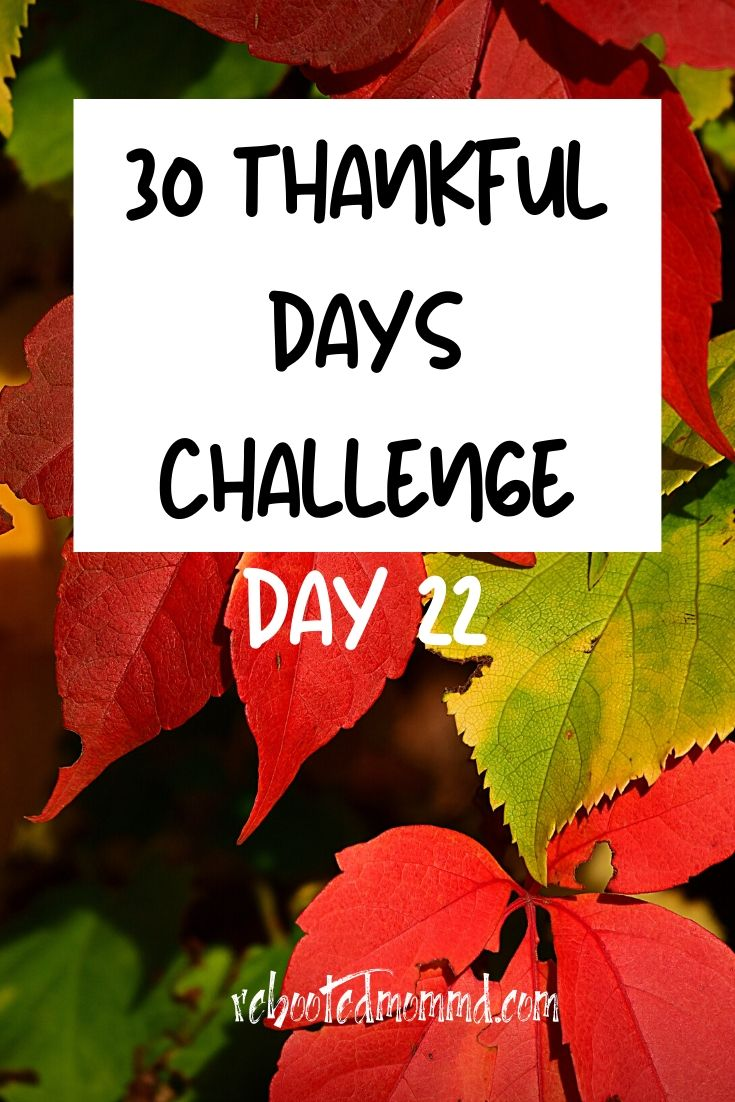 Day 22: Thankful for Art and Culture