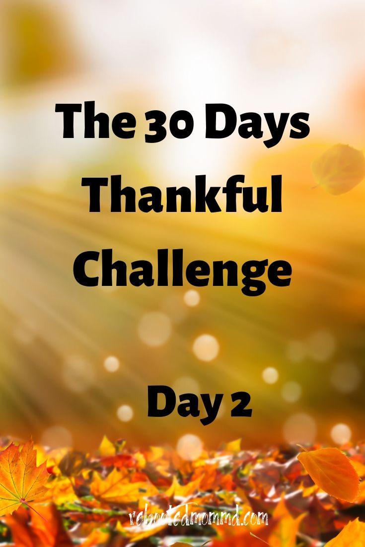 Day 2: Joy in Simplicity