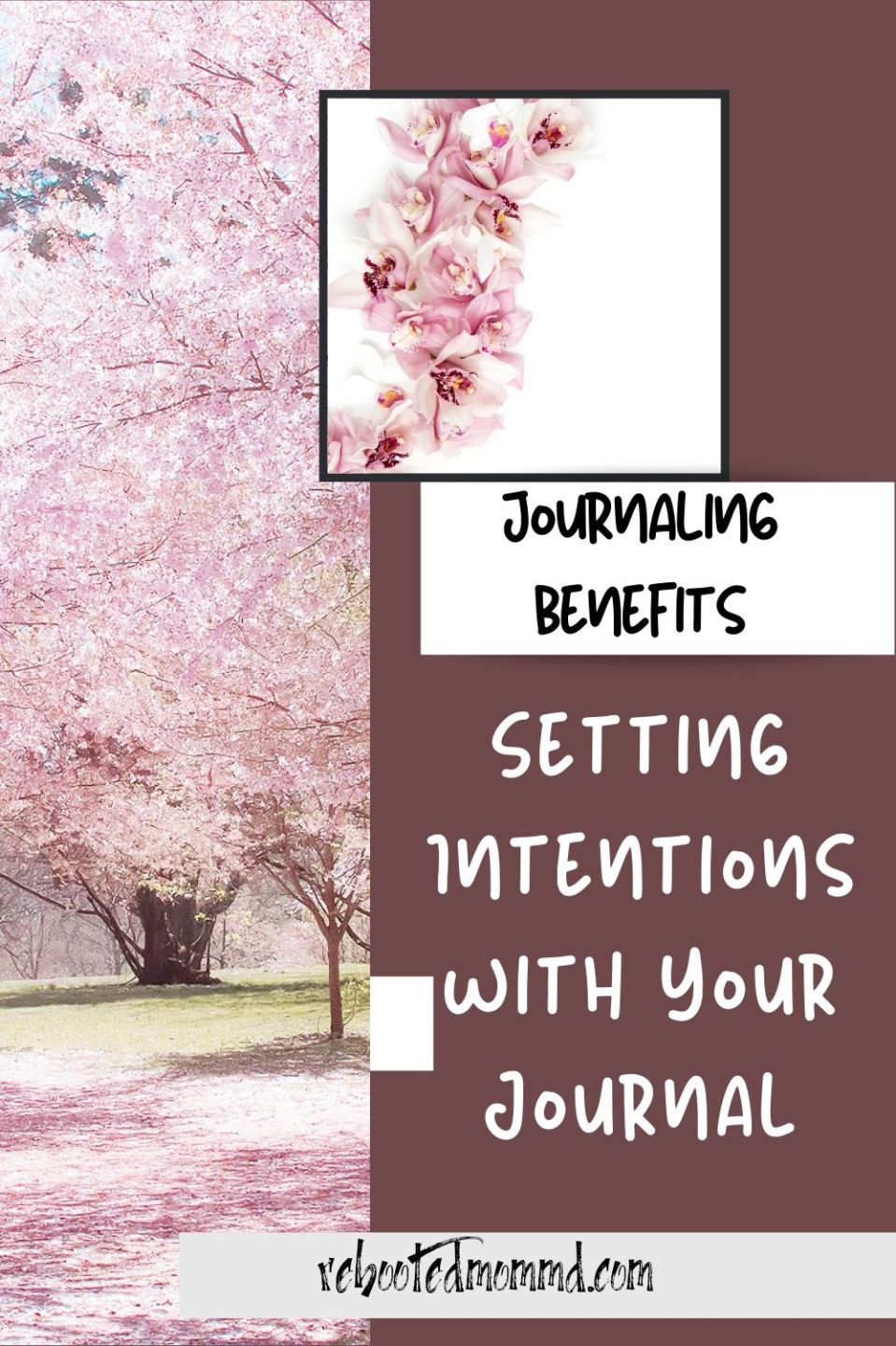 Setting Intentions with Your Journal
