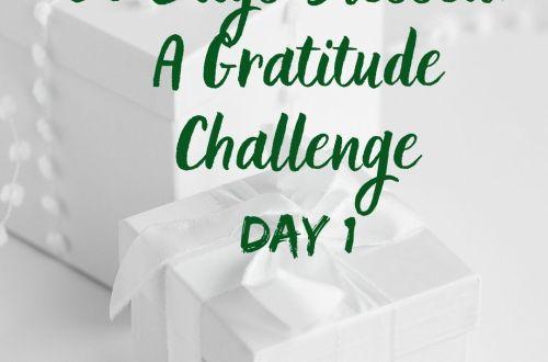 30 days blessed gratitude