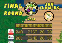 Food Growing League (NC1A) 2017-2018: Final Round – Sunflowers
