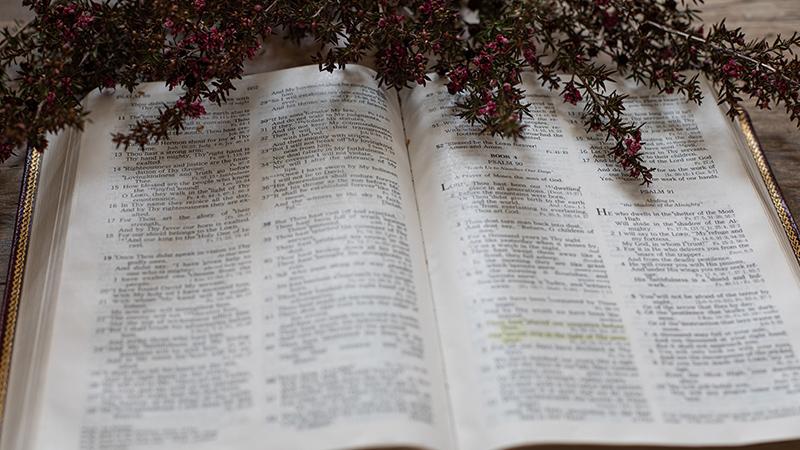 https://i0.wp.com/rec.or.id/images/article/fokus-pada-membuat-murid-matius-28-19-20.jpg Fokus Pada Membuat Murid (Matius 28:19-20)