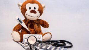 Você já viu macaco broxa? Assista (ou leia) para entender