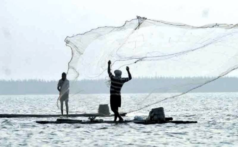 Consulta Seguro Defeso Pescador Artesanal 2019