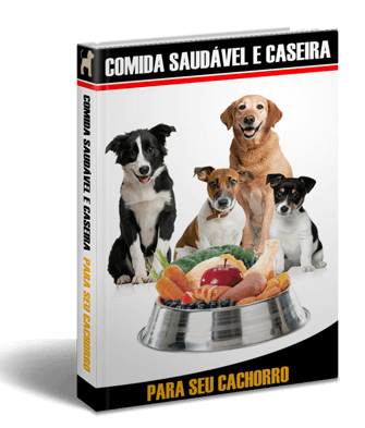 Comida Caseira Para Cães - 1 🐶