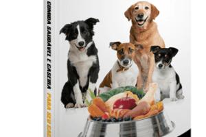 Comida caseira para cachorros