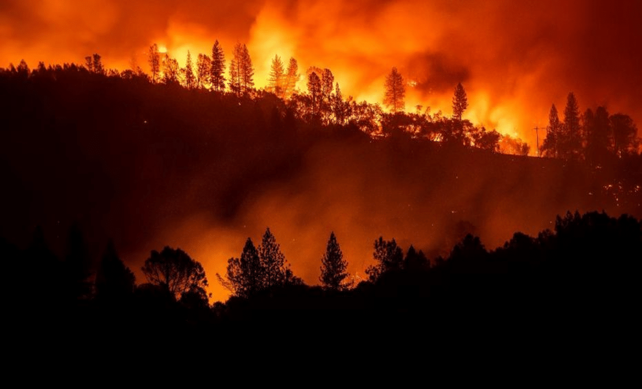 California Wildfire: Death toll rises to 71 with more than 1,000 missing