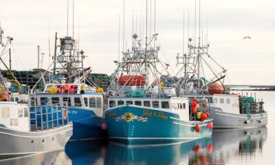 Fishermen of Canada Set to Dump Traps as Lucrative Lobster Season opens off N.S