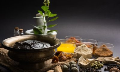 ayurvedic herbs Benefits
