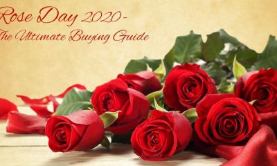 Rose Day 2020 – The Ultimate Buying Guide