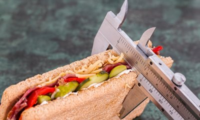 Sandwich measured by Vernier