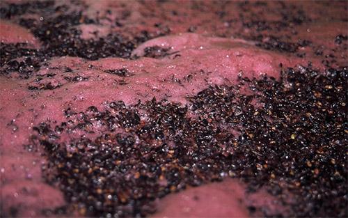 Упала перчатка на вине что делать дальше. Что делать если вино перестает бродить. Что можно сделать, если брожение остановилось