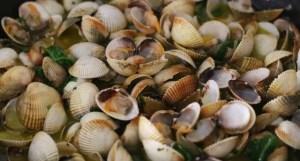 almejas - Pescados y mariscos con Thermomix