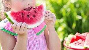 salud niños - Recetas tradicionales varios y arroces