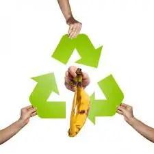 reciclaje de comida - Puré de calabaza hecho al horno