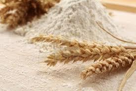 harina trigo