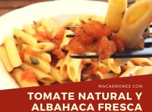 macarrones con tomate natural y albahaca fresca