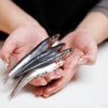 limpiar pescado