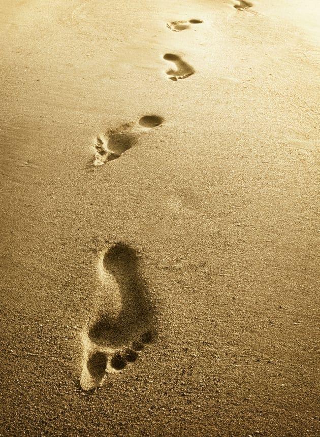 45fc1fd2e4639db7a71d040581c2cb26 - ▷ Siguiendo sus pasos 📖