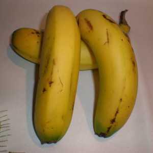 af08ba4bce655d5aaad3672b255643fe - ▷ Buenos plátanos 📖