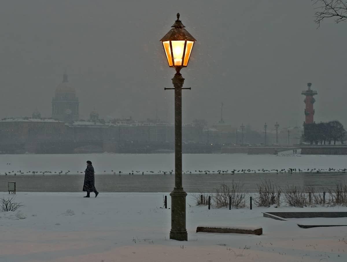 ec6196337b424054df1d55951c9bb0a7 - ▷ Como frío de invierno 📖