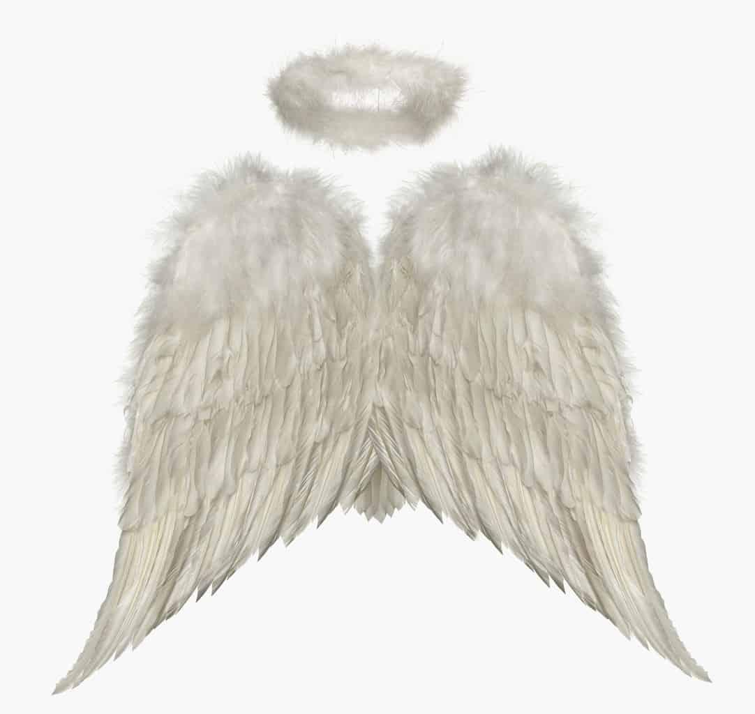 008c8534b5d3a2f55fcba82b811ebe8e - ▷ Carita de ángel 📖