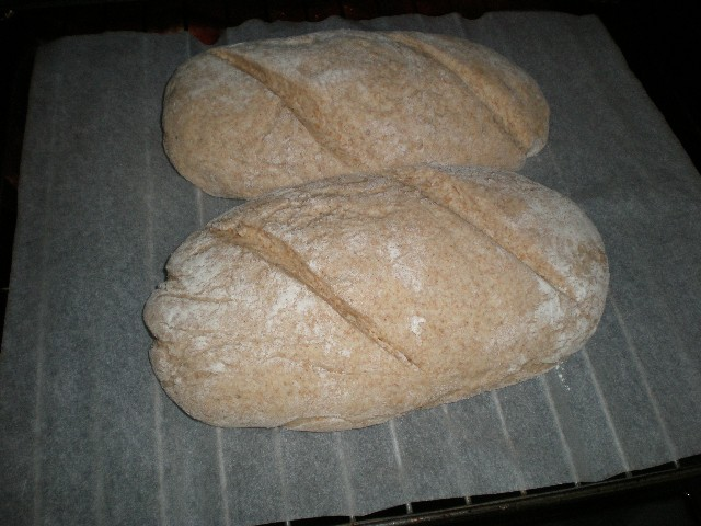 Meter pan integral en horno