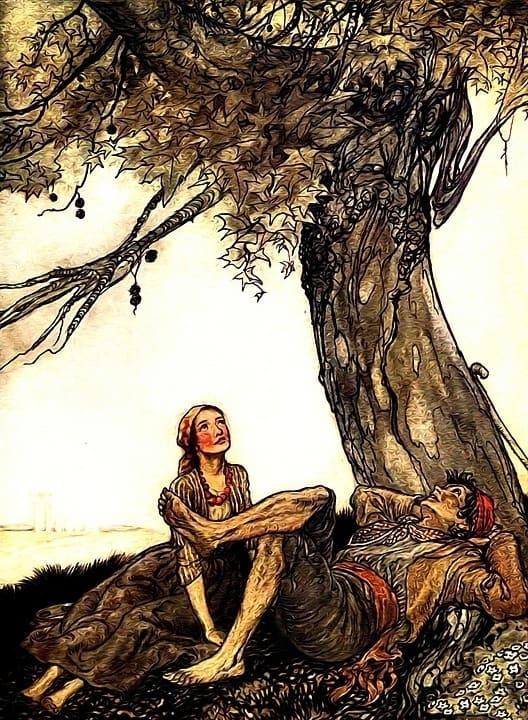 190046d78eea825976f5f5305c3cf4d2 - ▷ Mi árbol 📖