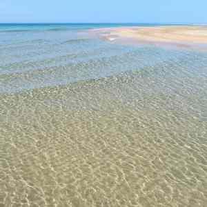 87f9b7a0e220ce7e8d7355ffedb40745 - ▷ Así es Fuerteventura 📖