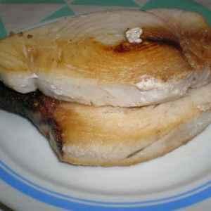 c57630a04591174080c546154e25e7cf - ▷ Atún blanco con papas fritas 🐠