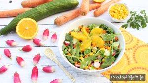 recette salade concombre radis carotte orange