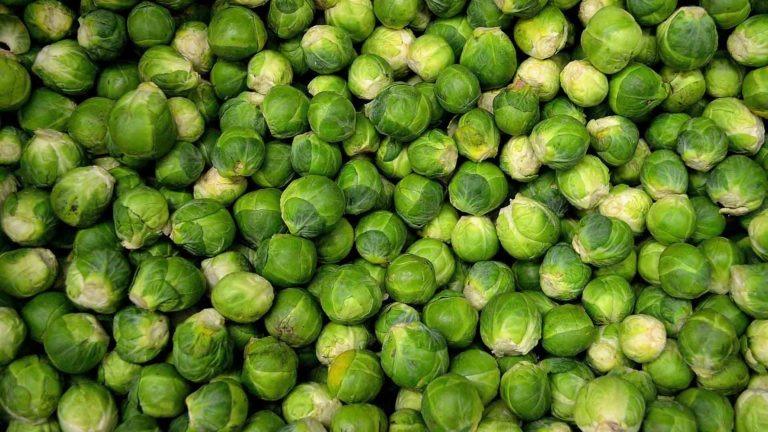 fruit legume choux bruxelle