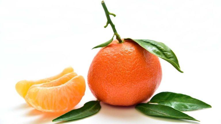 fruits et legume de saison