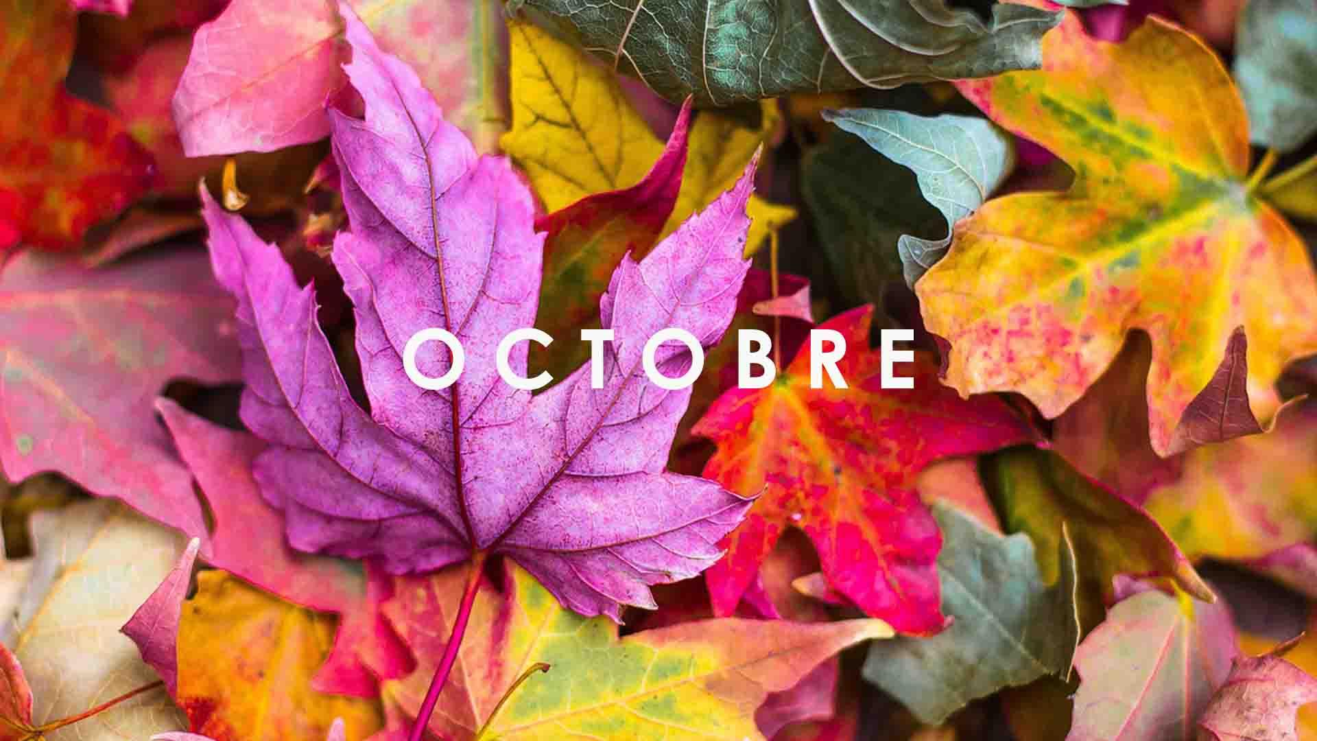 fruits legumes octobre saison