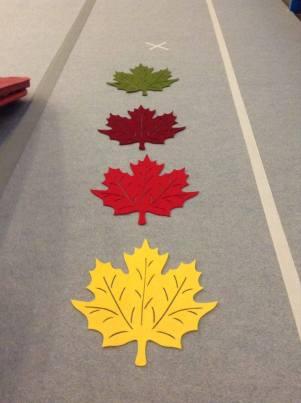 Felt leaf place mats that we used to designate spots for jumps (i.e. star jumps) or statics (i.e. stork stands).