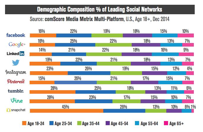 social media demographic composition