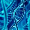 DNA molecule spiral. 3d illustration