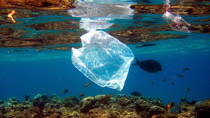 No usar bolsas de plástico, es un acto responsable.