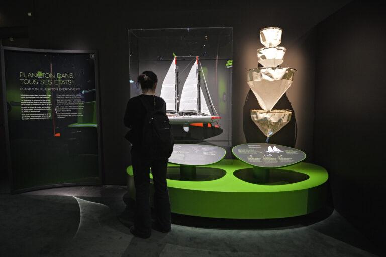 "Exposition ""Océan, une plongée insolite"" copyright : MNHN - JC Domenech."