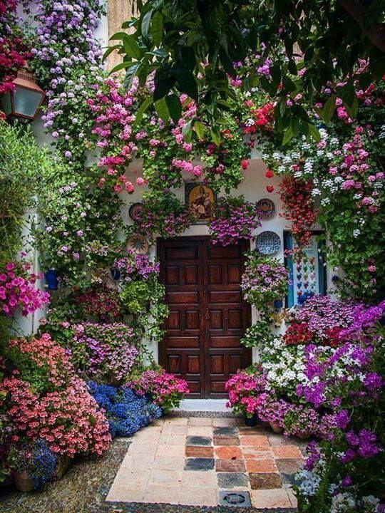 Colorful Backyard Garden 14
