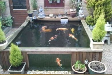 above ground koi pond feature
